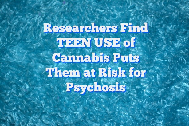 All Young Cannabis Users Face Psychosis Risk