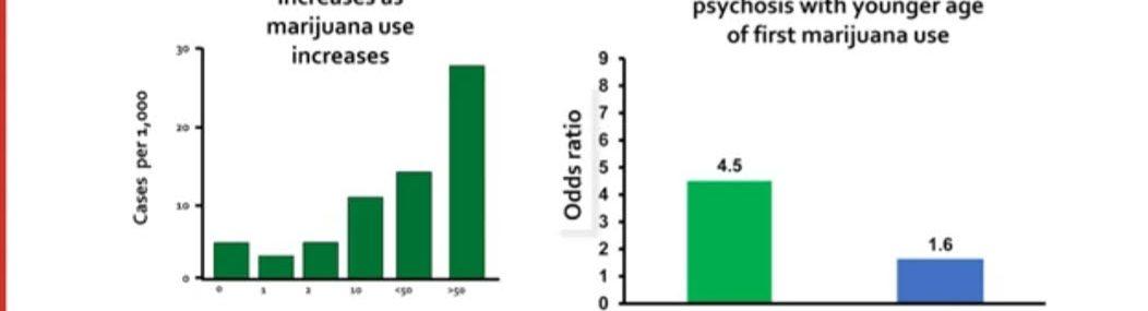 mairjuana-associated-psychosis