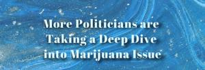 polilticians-marijuana-dangers