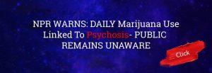npr-warning-cannabis-psychosis